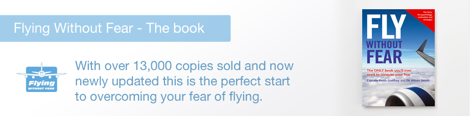 fear of flying book pdf